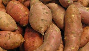 Wie bereitet man Süsskartoffeln zu